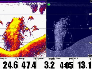 Humminbird Down Image with 2D